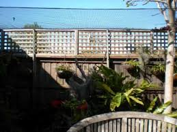 cat netting partial garden enclosure youtube