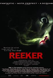 Light And Day Reeker