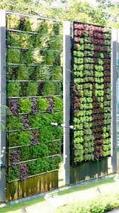 how to plant a drought tolerant living wall garden walled garden