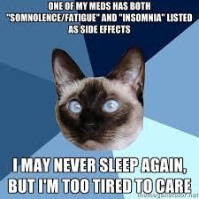Insomnia Meme - tuesday 2 december 2014 meme images 皓 chronic illness cat