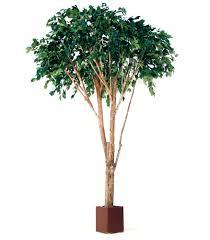 artificial trees artificial ficus tree exotica tropical