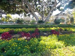 Balboa Park Botanical Gardens by The Schramm Journey January 2014