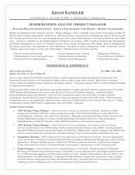 resume sample business analyst business analyst resume sample