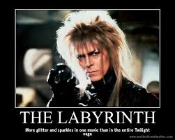 Labyrinth Meme - funny for labyrinth funny meme www funnyton com