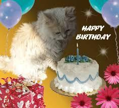 2142 best birthday gif images on pinterest birthday wishes