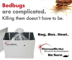 Bed Bug Fogger Bed Bug Fogger Alert Don U0027t Grab That Can Till You Read This