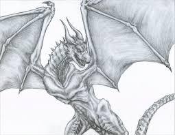 21 realistic dragon drawings free u0026 premium creatives