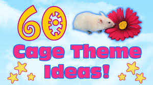Hamster Cages Cheap 60 Creative Cage Theme Ideas For Pets List Youtube