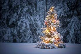 sensational design tree with snow and lights 7 5 foot