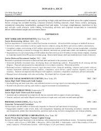 Credit Controller Resume Sample by Credit Analyst High Yield Distressed Debt