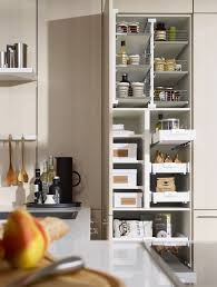 Kitchen Cabinet Pull Out Baskets Impressive Wood Cabinet With Shelves Also Frosted Glass Sliding