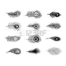 peacock sketch stock photos u0026 pictures royalty free peacock