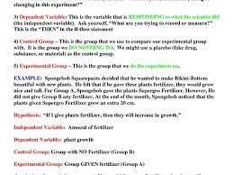 intellect simpsons scientific method worksheet answers worksheets