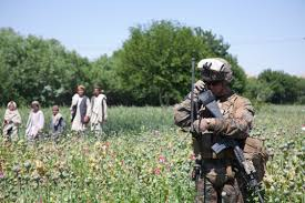 Opium by U S Occupation Leads To All Time High Afghan Opium Production