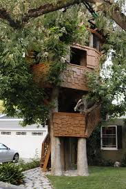 Real Treehouse Oddity Outings