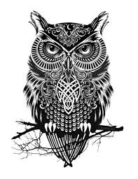 Owl Tattoos - best 25 owl design ideas on owl