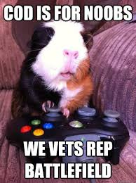 Guinea Pig Meme - funny guinea pig memes guinea best of the funny meme