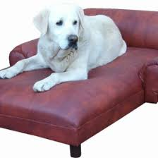 Dog Chaise Dog Beds U0026 Furniture U2013 Memory Foam Orthopedic U0026 More