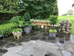 Eugenia Topiary Blog Dirt Simple Part 6