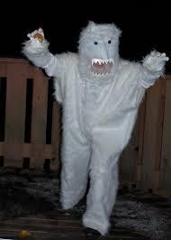 Yeti Halloween Costume Molly Weasley Somedaysislikethat