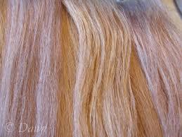 over the counter purple hair toner purposefully white hair dawn s dress diary