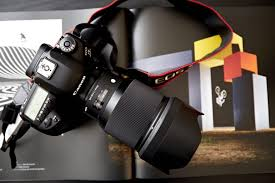 best low light dslr camera the best canon cameras for low light photography ranked