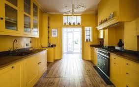 painting kitchen cabinet ideas the best kitchen cabinet paint ideas mynexthouseproject