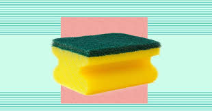 kitchen sponge your kitchen sponge is absolutely filthy and cleaning it won t