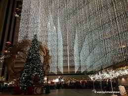christmas lights san francisco the best christmas spots in san francisco taylor hearts travel