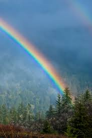 431 best the beautiful rainbow jehovah god u0027s promise images on