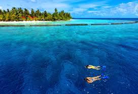 wallpapers world u0027s best diving sites download 42 images