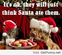 Cute Christmas Meme - funny christmas quotes happy holidays