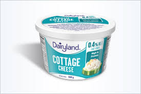 non dairy cottage cheese dairyland cottage cheese