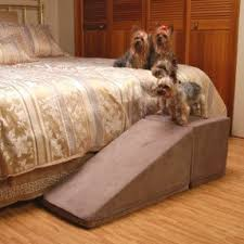 Elevated Dog Bed With Stairs 100 Dog Ramps For Beds Foter