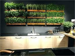 indoor kitchen wall mounted herb garden indoor kitchen garden best herb wall ideas