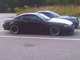Black Mustang 2000 Show Me Those Cowl Hoods Svtperformance Com
