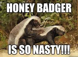 Honey Badger Memes - honey badger is so nasty honey badger quickmeme