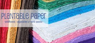 plantable paper giggles eco friendly green products for every aspect of