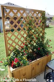 Privacy Trellis Ideas by 106 Best Screening Images On Pinterest Landscaping Backyard