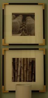 ikea ribba 90 best photography wall art arrangements images on pinterest