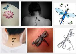 top 15 dragonfly tattoo designs styles at life