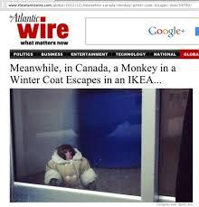 Ikea Monkey Meme - ikea meme 28 images ikea s pore has memed their blonde bearded