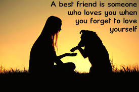 best friend quotes or quotes about friends