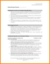 Resume Summaries Project Summary Template Word Letter Of Intent To Purchase Goods