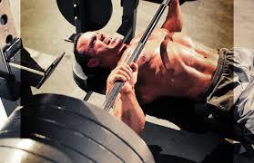Inzer Bench Shirt 10 Keys To A World Record Bench Press Bodybuilder Training Tips