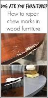 best 25 repair wood furniture ideas on pinterest repair