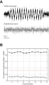rotating waves during human sleep spindles organize global