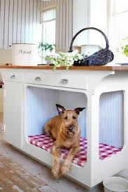 our a to z guide to home renovation floor space dog beds and