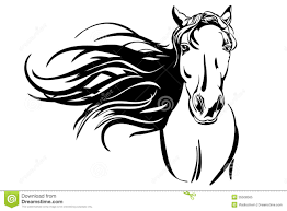 mustang horse drawing drawn horse vector pencil and in color drawn horse vector