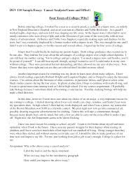 Examples Of Introductory Paragraphs For Essays Essay Introduction Paragraph Outline